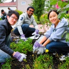 Students gardening as part of a community outreach event