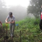 Students digging in a field as part of a research project.